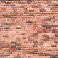 wall2s (Wow Wow)